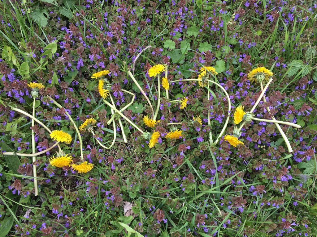 Wiosenne porządki z organizmem!